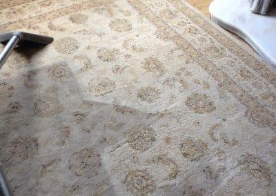 warrington carpet cleaners
